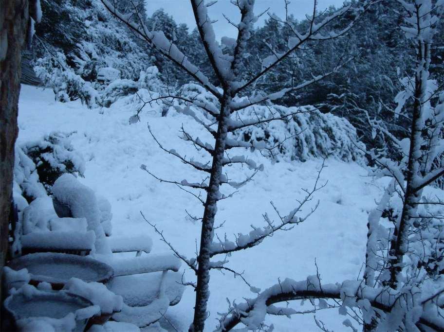 1 Nieve al Alba